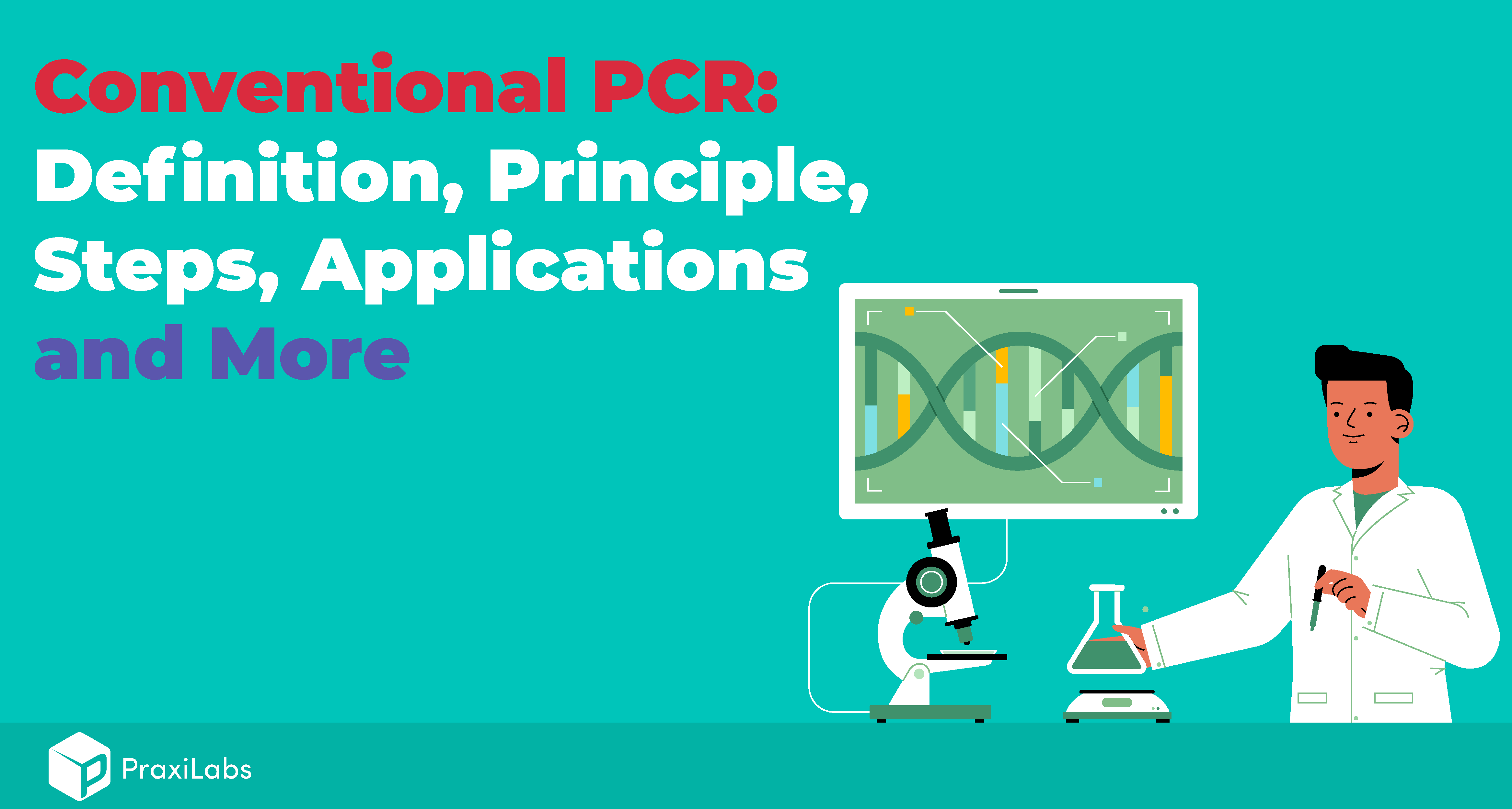 What Are The Three Basic Steps of Conventional PCR?