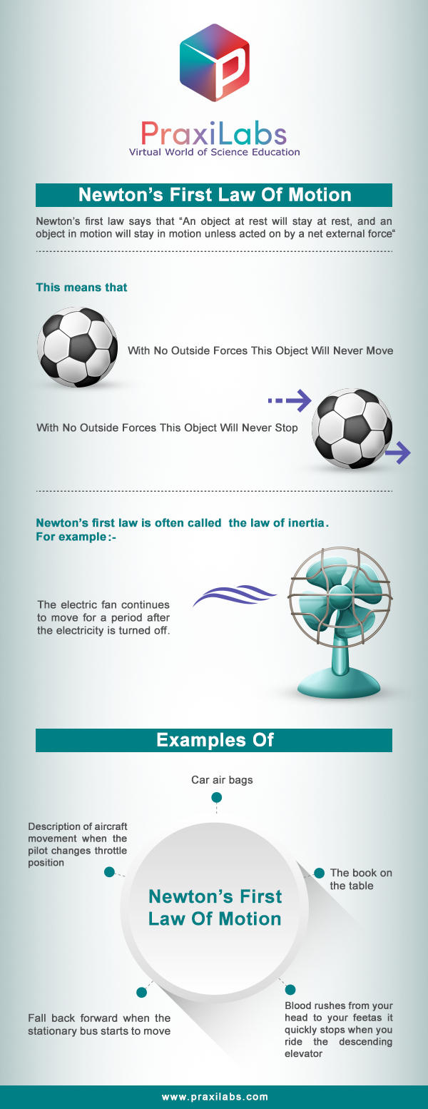`newton's first law- infographic