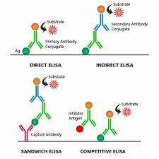 The following figure shows the difference between direct and indirect ELISA